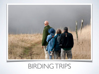Birding Trips and Hikes